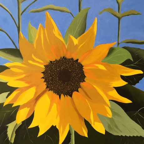 (CreativeWork) Still Life Botanicals - Golden Sunflower by Raynette Mitchell. Acrylic Paint. Shop online at Bluethumb.