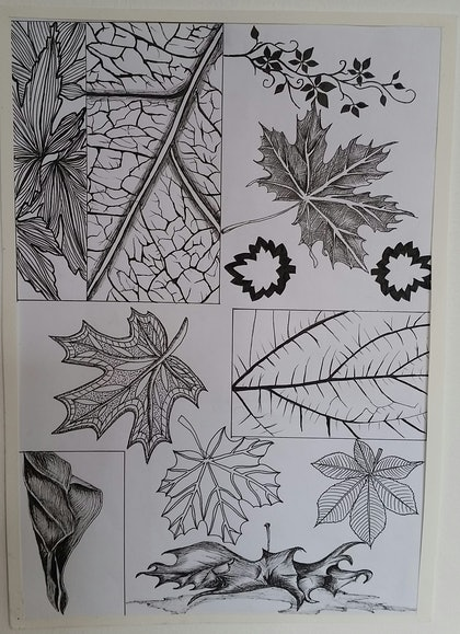 (CreativeWork) Autumn Leaves Detail by Feng Guo. drawing. Shop online at Bluethumb.