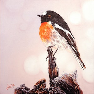 (CreativeWork) Rockin Robin (SET OF 2) by Luna Vermeulen. oil-painting. Shop online at Bluethumb.