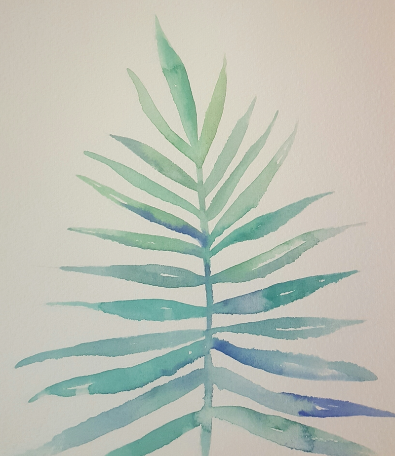 (CreativeWork) Green leaf by Amy Sabella. print. Shop online at Bluethumb.