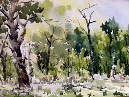 (CreativeWork) Jells Park by Zhan WANG. watercolour. Shop online at Bluethumb.