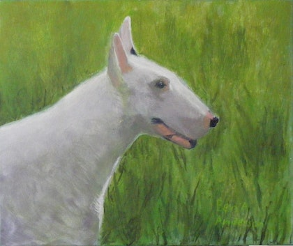 (CreativeWork) Petey The Bull Terrier by Ben A Anderson. arcylic-painting. Shop online at Bluethumb.