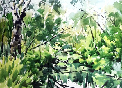 "(CreativeWork) Original watercolour painting ""Pond"" by Zhan WANG. watercolour. Shop online at Bluethumb."