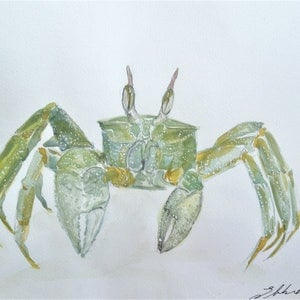 (CreativeWork) Ghost Crab by Liz H LOVELL. mixed-media. Shop online at Bluethumb.