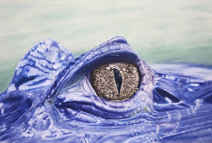 (CreativeWork) Caiman by Alexey Prokopenko. oil-painting. Shop online at Bluethumb.