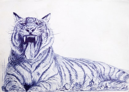 (CreativeWork) Tiger by Alexey Prokopenko. drawing. Shop online at Bluethumb.