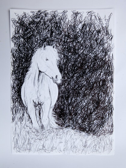 (CreativeWork) Horse3 by Alexey Prokopenko. drawing. Shop online at Bluethumb.