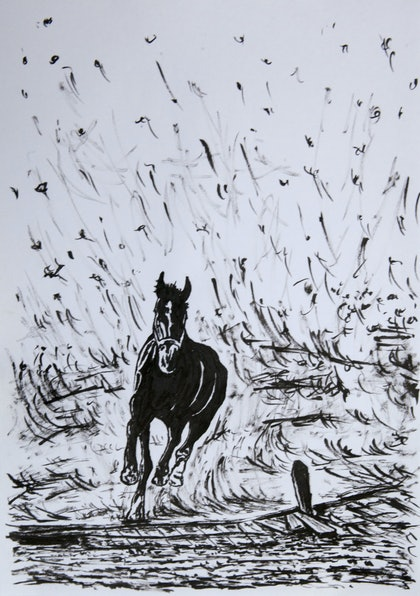 (CreativeWork) Horse4 by Alexey Prokopenko. drawing. Shop online at Bluethumb.