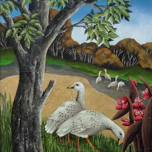 (CreativeWork) CAPE BARREN GEESE by Johanna Hildebrandt. acrylic-painting. Shop online at Bluethumb.