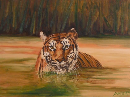 (CreativeWork) Tiger 2 by Chris and Nikki Winter. arcylic-painting. Shop online at Bluethumb.