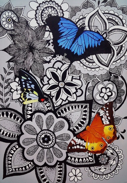 (CreativeWork) Majestic Butterflies by Georgia Clarke. arcylic-painting. Shop online at Bluethumb.