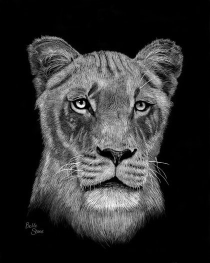 (CreativeWork) A Hunter's Stare by Belle Stone. print. Shop online at Bluethumb.