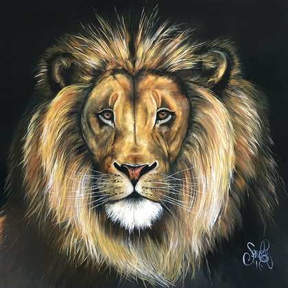 (CreativeWork) 'african lion' by Sarah Elizabeth. arcylic-painting. Shop online at Bluethumb.
