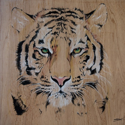(CreativeWork) Tiger by Grant Molony. arcylic-painting. Shop online at Bluethumb.