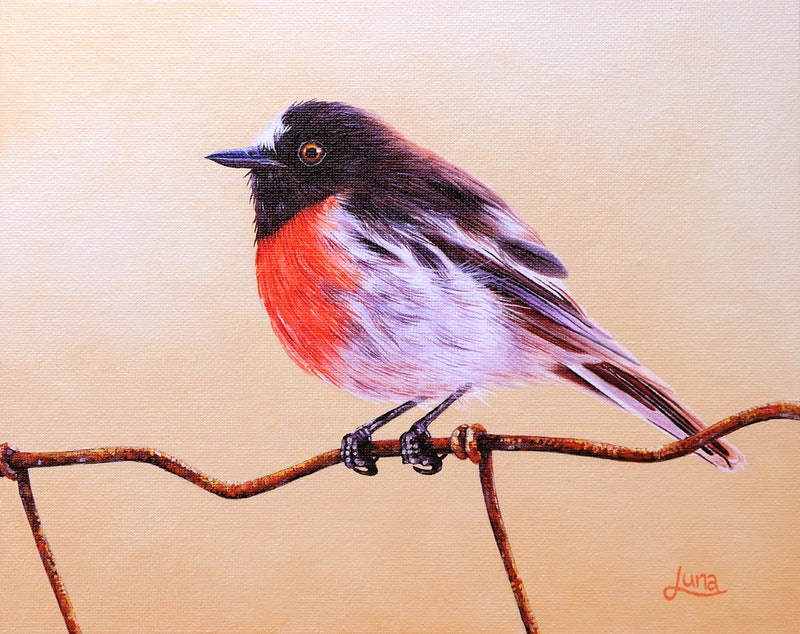 Bird On A Wire By Luna Vermeulen Paintings For Sale Bluethumb