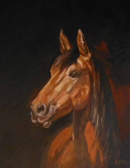 (CreativeWork) Horse by Chris and Nikki Winter. arcylic-painting. Shop online at Bluethumb.