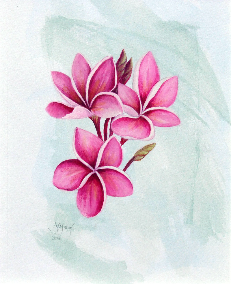 (CreativeWork) Pink Frangipani flowers  by John N Mason. arcylic-painting. Shop online at Bluethumb.