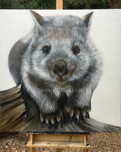 (CreativeWork) 'baby wombat so sweet' by Sarah Elizabeth. arcylic-painting. Shop online at Bluethumb.