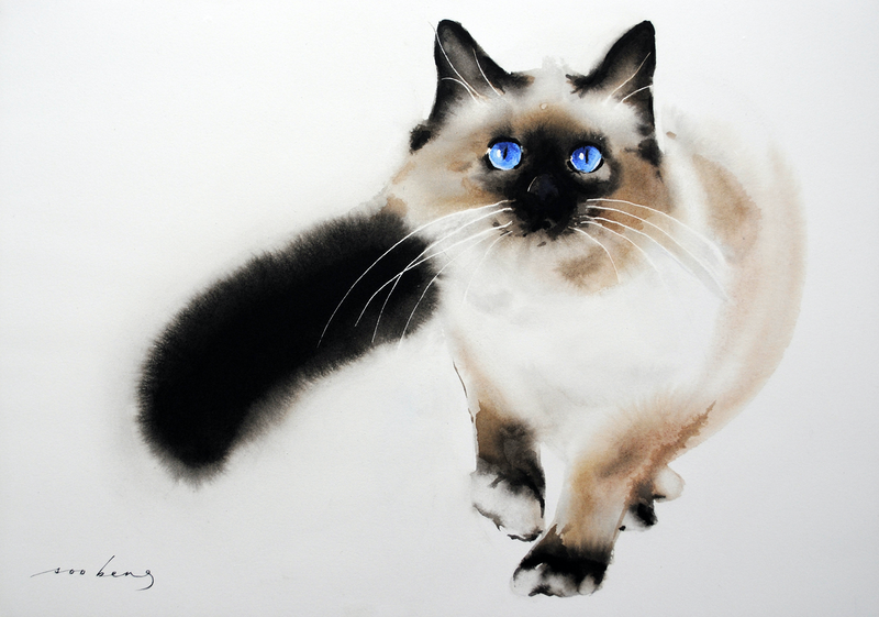(CreativeWork) Blue Eyes 2 by Soo Beng Lim. watercolour. Shop online at Bluethumb.