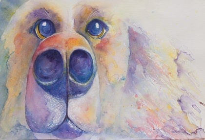 (CreativeWork) Big Dogs Wet Nose Kisses by Katie Lloyd. watercolour. Shop online at Bluethumb.