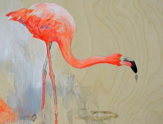 (CreativeWork) Flamingos II  by Lydie Paton. #<Filter:0x00007fa5848b8900>. Shop online at Bluethumb.