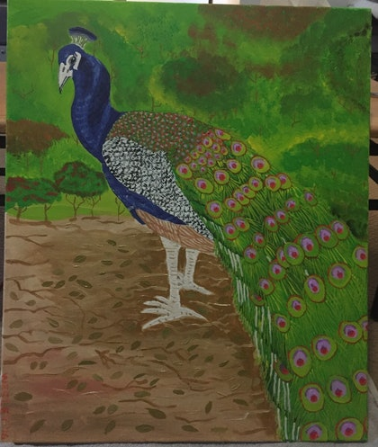 (CreativeWork) Peacock by Wesley Camigla. arcylic-painting. Shop online at Bluethumb.