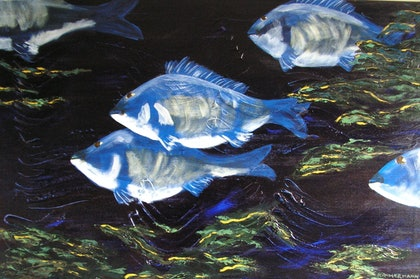 (CreativeWork) Pisces by Karen Kammermann. arcylic-painting. Shop online at Bluethumb.