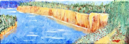 (CreativeWork) Banks of the Murray by Peter Harte. arcylic-painting. Shop online at Bluethumb.