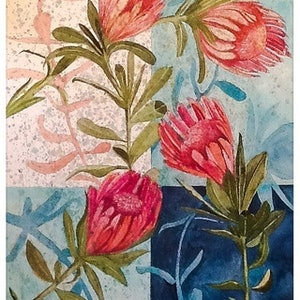 (CreativeWork) Australian protea by Caroline Deeble. watercolour. Shop online at Bluethumb.