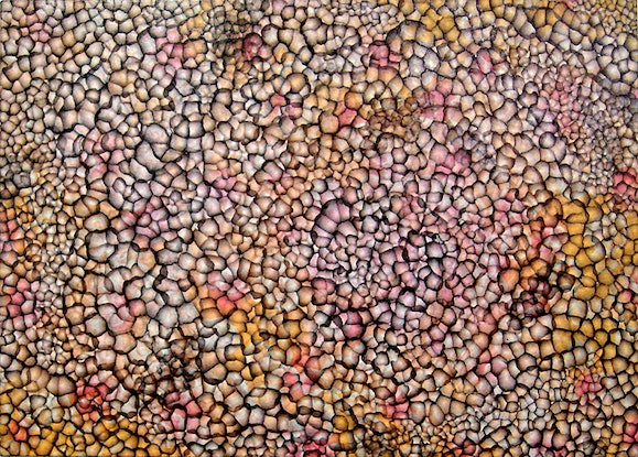 (CreativeWork) Bio-cluster XII by Jacquelyn Stephens. Oil Paint. Shop online at Bluethumb.