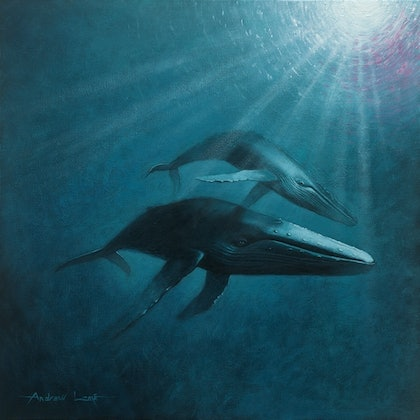 (CreativeWork) Graceful Humpbacks  by Andrew Lome. arcylic-painting. Shop online at Bluethumb.