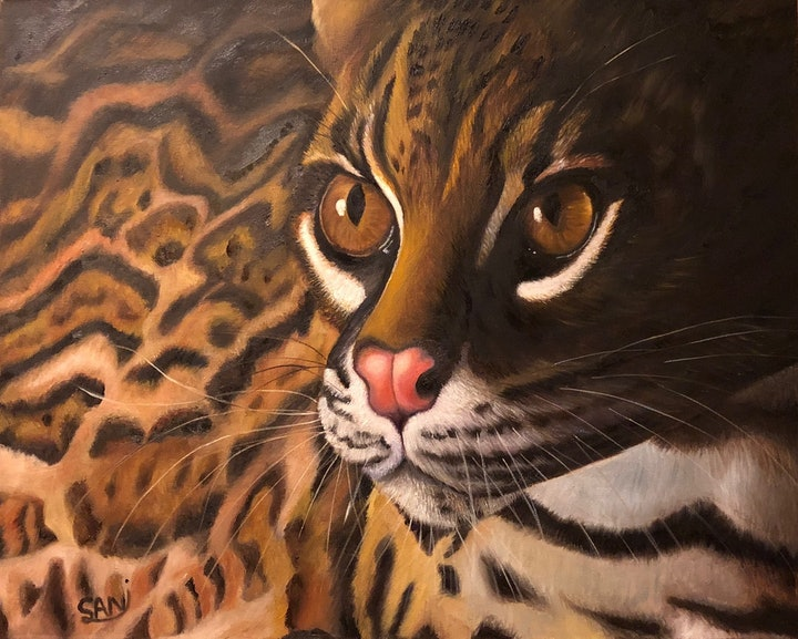 (CreativeWork) Wildlife by Sanaz Orandi. oil-painting. Shop online at Bluethumb.