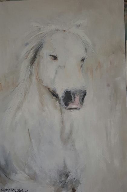 (CreativeWork) White horse by Sandy Muston. oil-painting. Shop online at Bluethumb.