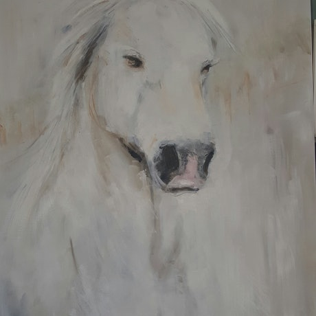 (CreativeWork) White horse by Sandy Muston. Oil Paint. Shop online at Bluethumb.
