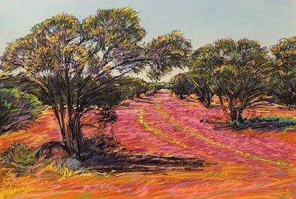 (CreativeWork) AFTER THE RAIN, EVERLASTINGS IN MURCHISON MULGA by John Darcey. other-media. Shop online at Bluethumb.