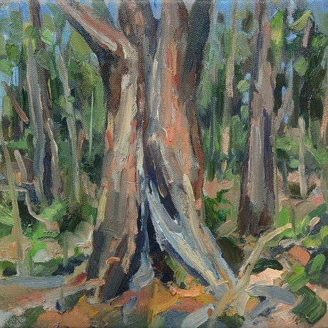 (CreativeWork) On the Bibbulmun Track: plein-air by Steven Makse. Oil Paint. Shop online at Bluethumb.