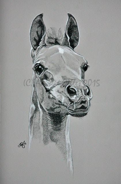 (CreativeWork) Promise of Tomorrow by Ainslie Gilles-Patel. drawing. Shop online at Bluethumb.