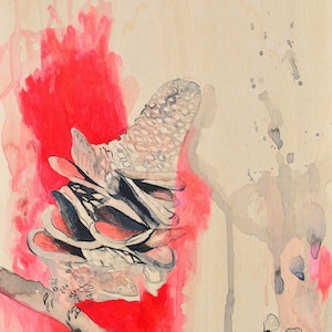 (CreativeWork) Red Banksia by Lydie Paton. mixed-media. Shop online at Bluethumb.