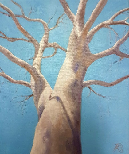 (CreativeWork) Ghost Gum by Paul Renals. print. Shop online at Bluethumb.