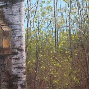 (CreativeWork) The Birch House by Cory Acorn. print. Shop online at Bluethumb.