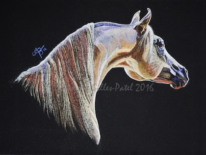 (CreativeWork) Parys Lights by Ainslie Gilles-Patel. drawing. Shop online at Bluethumb.