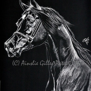 (CreativeWork) Fayrid by Ainslie Gilles-Patel. drawing. Shop online at Bluethumb.