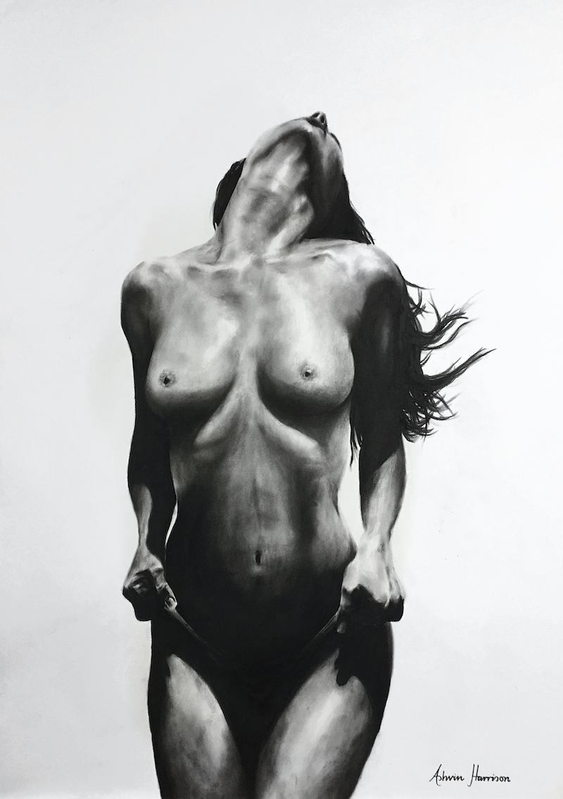 (CreativeWork) NUDE WOMAN CHARCOAL STUDY 35 by Ashvin Harrison. drawing. Shop online at Bluethumb.