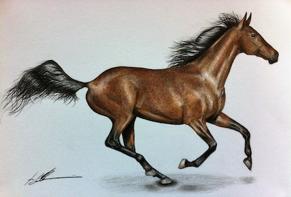 (CreativeWork) Running Free by Hayley Robinson. drawing. Shop online at Bluethumb.