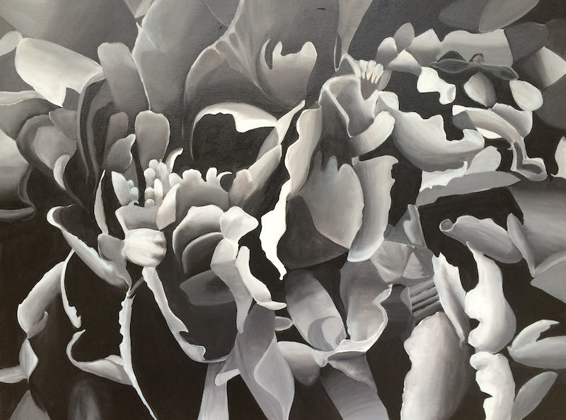 (CreativeWork) Peony in Black and White by Tracey Miller. Acrylic Paint. Shop online at Bluethumb.