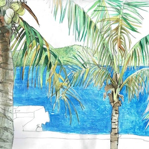 (CreativeWork) Tropical  by John Graham. Watercolour Paint. Shop online at Bluethumb.