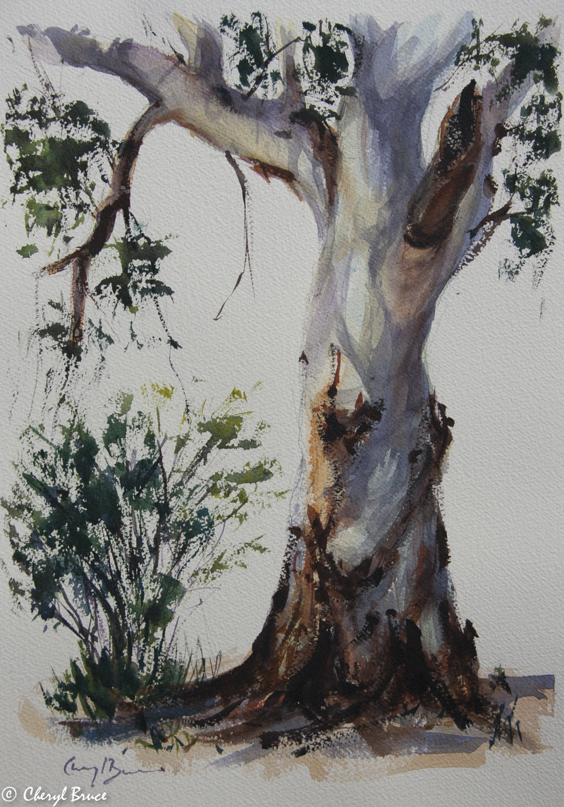 (CreativeWork) Gum Study V by Cheryl Bruce. watercolour. Shop online at Bluethumb.