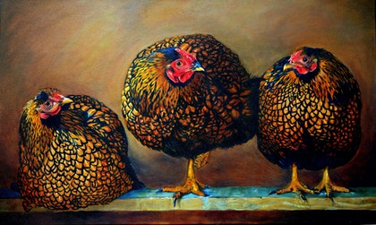(CreativeWork) Chickens in the Coop by Lydie Paton. oil-painting. Shop online at Bluethumb.