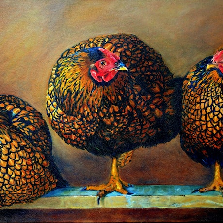 (CreativeWork) Chickens in the Coop by Lydie Paton. Oil Paint. Shop online at Bluethumb.