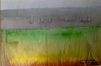 (CreativeWork) Wetlands by Carole Cassidy. watercolour. Shop online at Bluethumb.